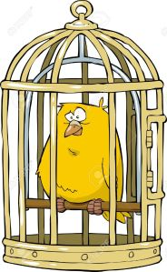 19085379-canary-in-a-bird-cage-illustration-stock-vector